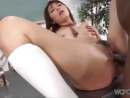 Nice-looking brown-haired Marika Hase rides as she gets nipple sucked